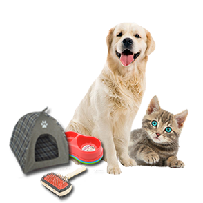 Pets Accessories & Supplies